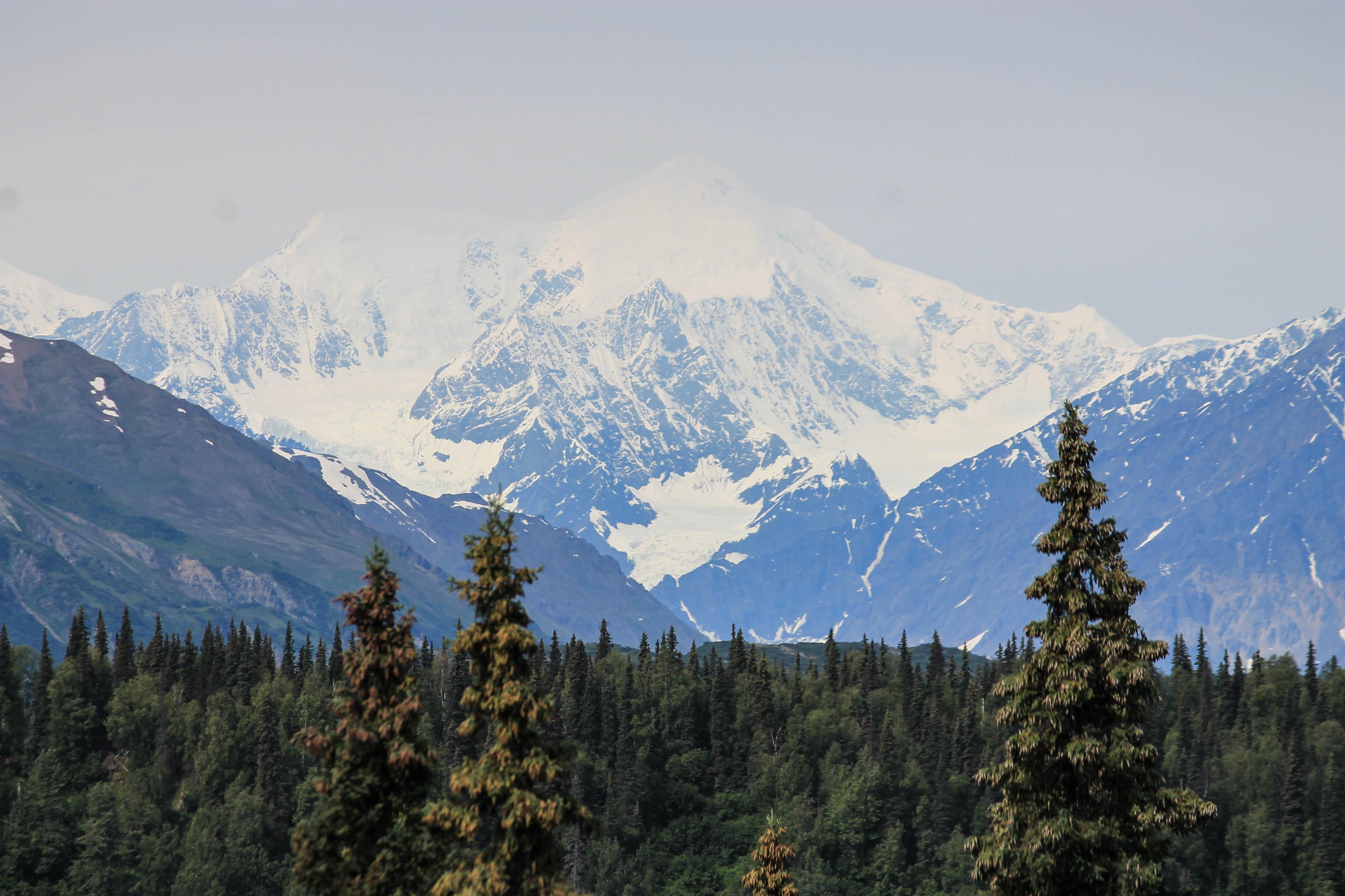 McKinley from Stony Hill Buses Tourism Postcard Denali National Park Alaska Mt