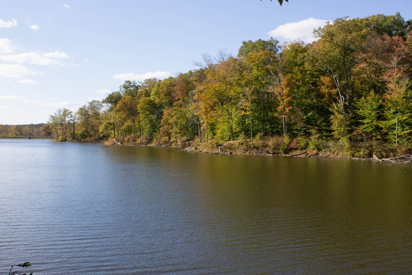 Ogle Lake, Brown County State Park, Indiana